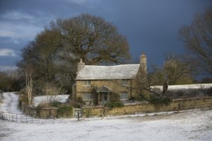 What I thought I would get: Rosehill Cottage (from the 2006 movie, The Holiday)