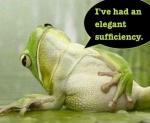 elegant sufficiency