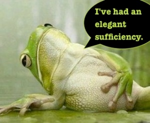 elegant sufficiency
