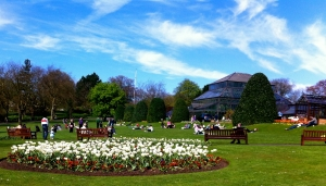 Sunshine at the Botanic Gardens, Glasgow. Nothing to talk about.