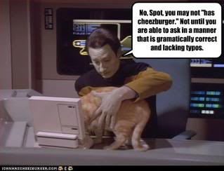 funny-pictures-star-trek-cat-wants-burger
