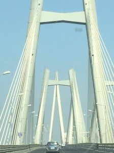 But as we crossed the gorgeous Sea Link bridge, I was picturing tablecloths, napkins, and [no, please not that] quilt flapping off into the fog. The only thing that got me through was that Jaya had promised parathas for lunch.