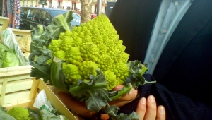 Don't math with your food! (Romanesco or fractal?)