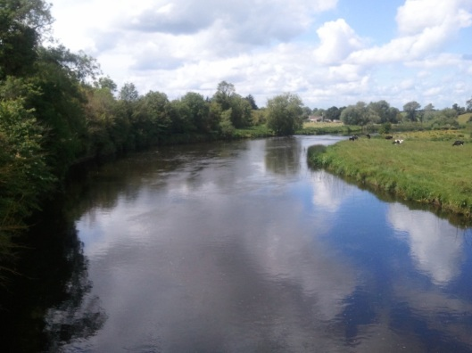 Figure 3 River Boyne as seen from Newgrange. (c) Ali Isaac