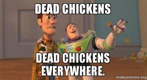 dead-chickens-dead