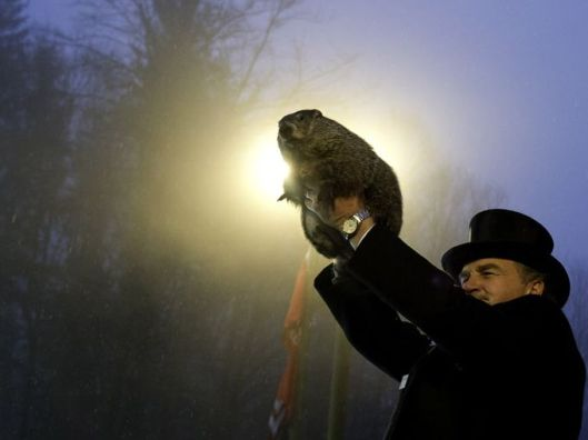 "According THIS ENTRY in Wikipedia: The first documented American reference to Groundhog Day can be found in a diary entry,[9] dated February 4, 1841, of Morgantown, Pennsylvania, storekeeper James Morris: Last Tuesday, the 2nd, was Candlemas day, the day on which, according to the Germans,[10] the Groundhog peeps out of his winter quarters and if he sees his shadow he pops back for another six weeks nap, but if the day be cloudy he remains out, as the weather is to be moderate. Clymer H. Freas, the politically savvy editor of the local Punxsutawney Spirit newspaper, lost no time in promoting their local groundhog as the nation's official ""Groundhog Day meteorologist."" [Image Credit: USA Today] http://www.usatoday.com/story/news/nation/2015/01/30/groundhog-day-facts-punxsutawney-phil/22587017/"