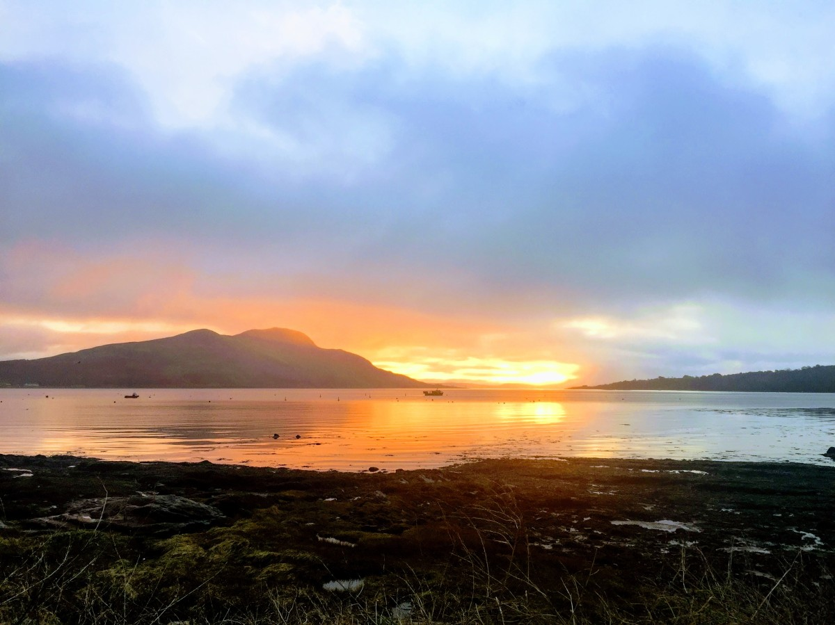 I know it's December in the north of #Scotland but...  #WordlessWednesday